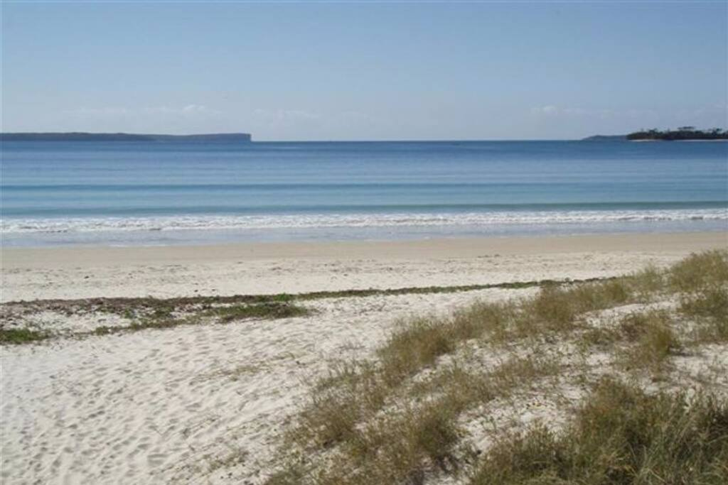 Collingwood Beach - Only 100metres from the house