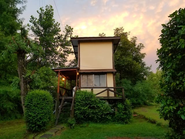 Escapada en la naturaleza. Cabaña Ramita