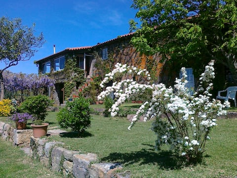 Manor House over Douro Valley