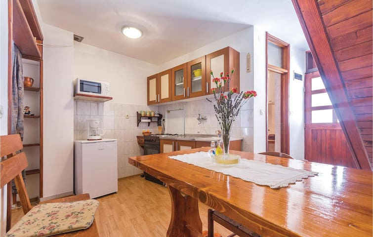 Cozy Holiday apartment in Vodnjan