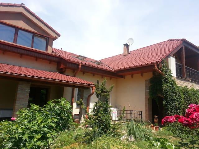Sturovo apartment + terrace+bikes - Štúrovo - Pis