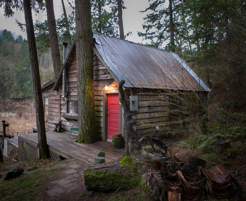 Cabin in the woods!