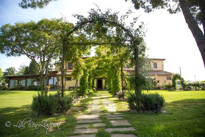 Ambra  Agrisalotto - Cortona - Wohnung