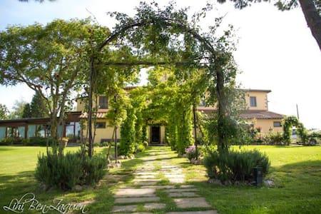 Ambra  Agrisalotto - Cortona - Apartamento