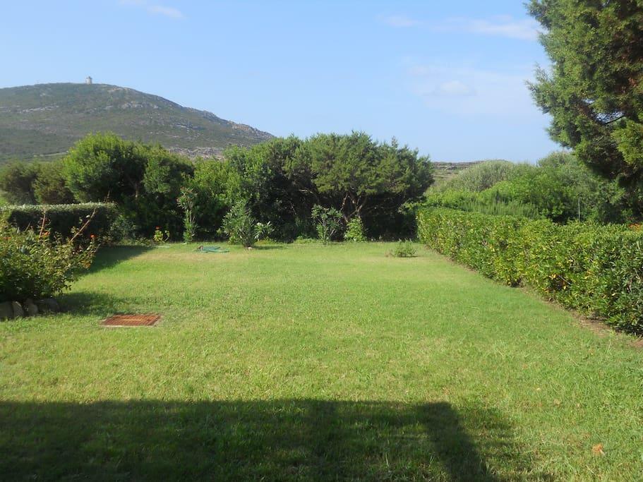 Giardino e vista dal patio sul retro