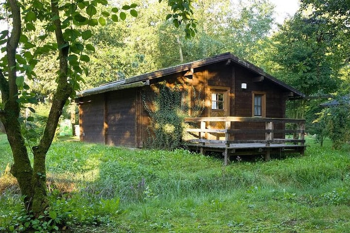 4 star holiday home in Hechthausen
