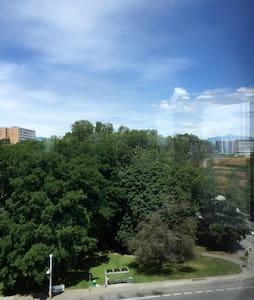 市中心高层一房一卫套间 - Lakás