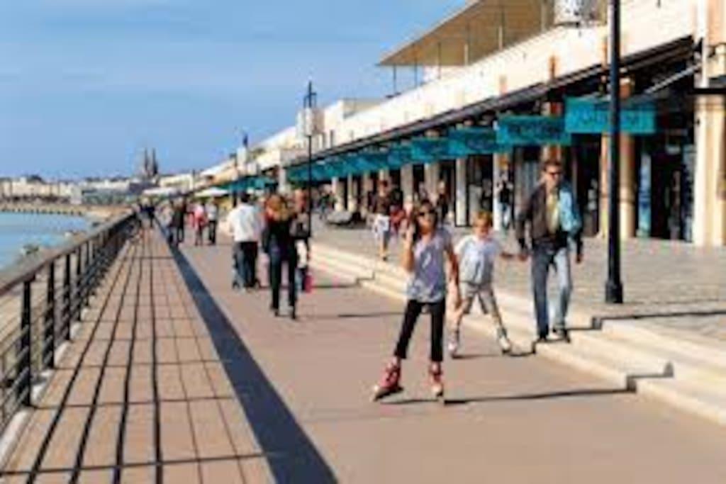 A 200m : quais avec magasins de marques et divers bars et restaurants. Idéal pour se balader, faire du vélo, rollers....