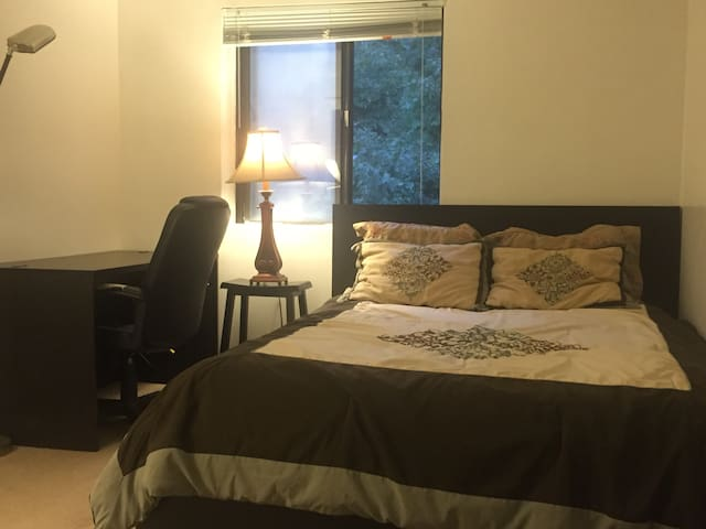 Private bedroom in a two bedroom Apt - Quincy - Apartment