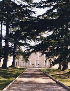 Belle propriété XIXème B&B - RDC - Samazan
