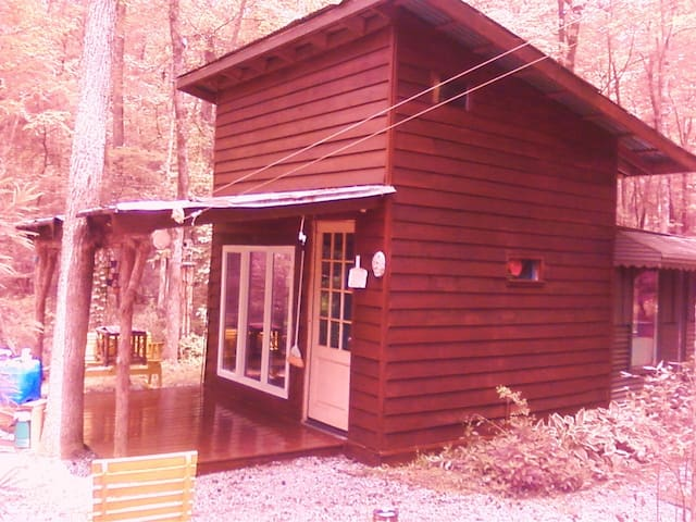 Art/ writers cabin on ten acres - Mebane - Cabaña