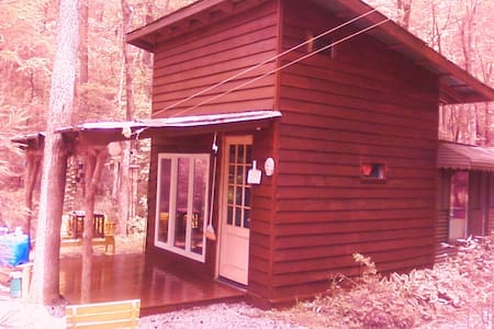 Art/ writers cabin on ten acres - Mebane