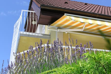 VillaBalaton - apartment with balcony and AC