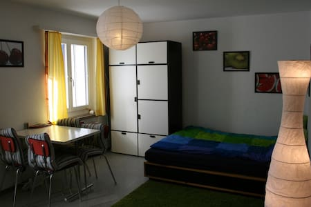 The appartment located in city center, next to railway station Davos Dorf.3 hours by train (2 by car) from Zurich Airport. I offer one room fully furnished studio with double bed + extra mat for 3rd person.Look photos and if questions just contact me