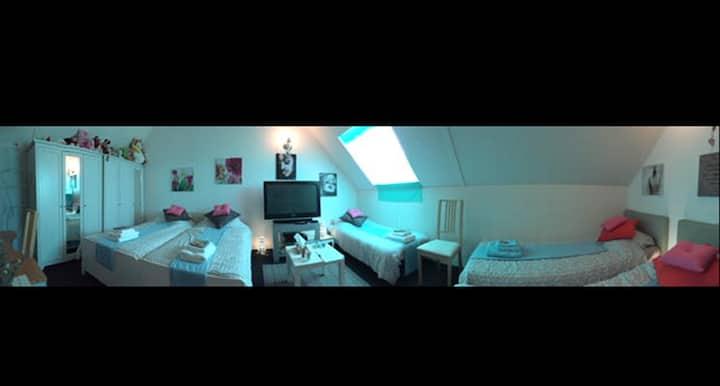 Visit Amsterdam & Utrecht ! Cosy Comfortable B&B.