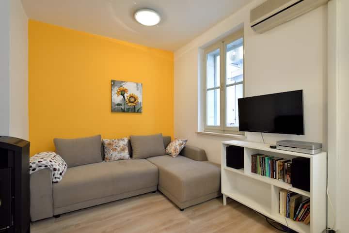 Charming Apartment Rosa in Piran