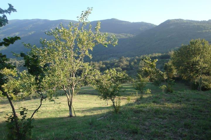 Parco Nazionale del Cilento - Castel San Lorenzo - Ev