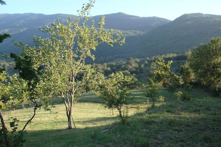 Parco Nazionale del Cilento - Castel San Lorenzo