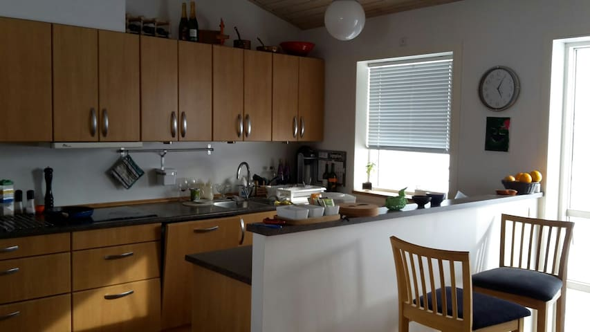 Large home, with great view. - Nuuk - Appartement