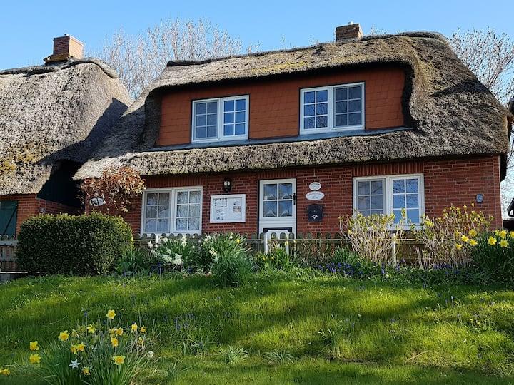 Reetdach-Doppelhaushälfte, Liebesallee Pellworm
