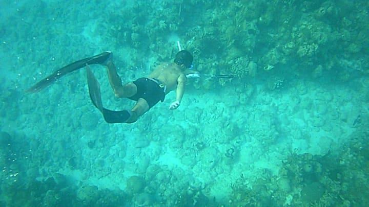 Hostal El Buzo snorkeling incluido (Room # 1)