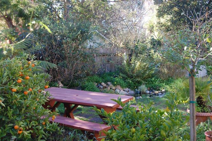 Birdsong Studio by Beach--Jasmine Gardens