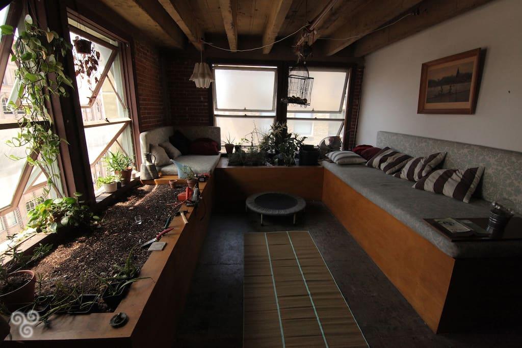 Indoor garden!