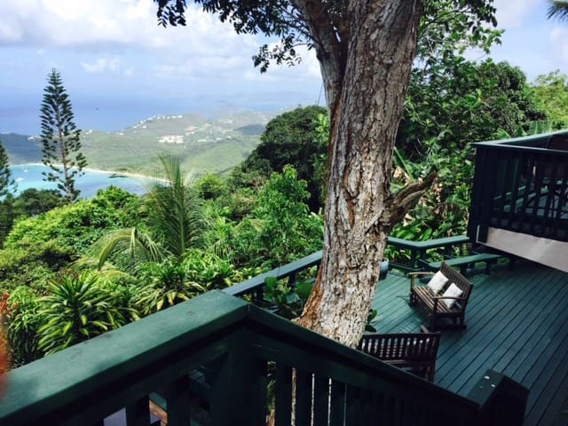 Escape to Paradise!! - St. Thomas 00802, USVI - Daire