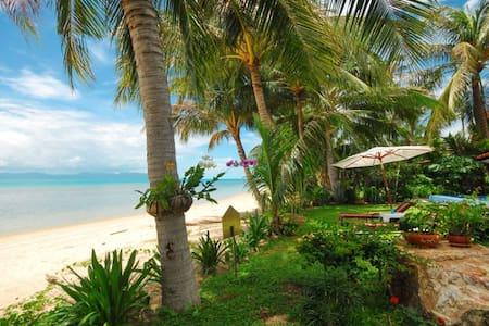 Luxurious 3 Bedroom Beach-Villa. - Koh Samui