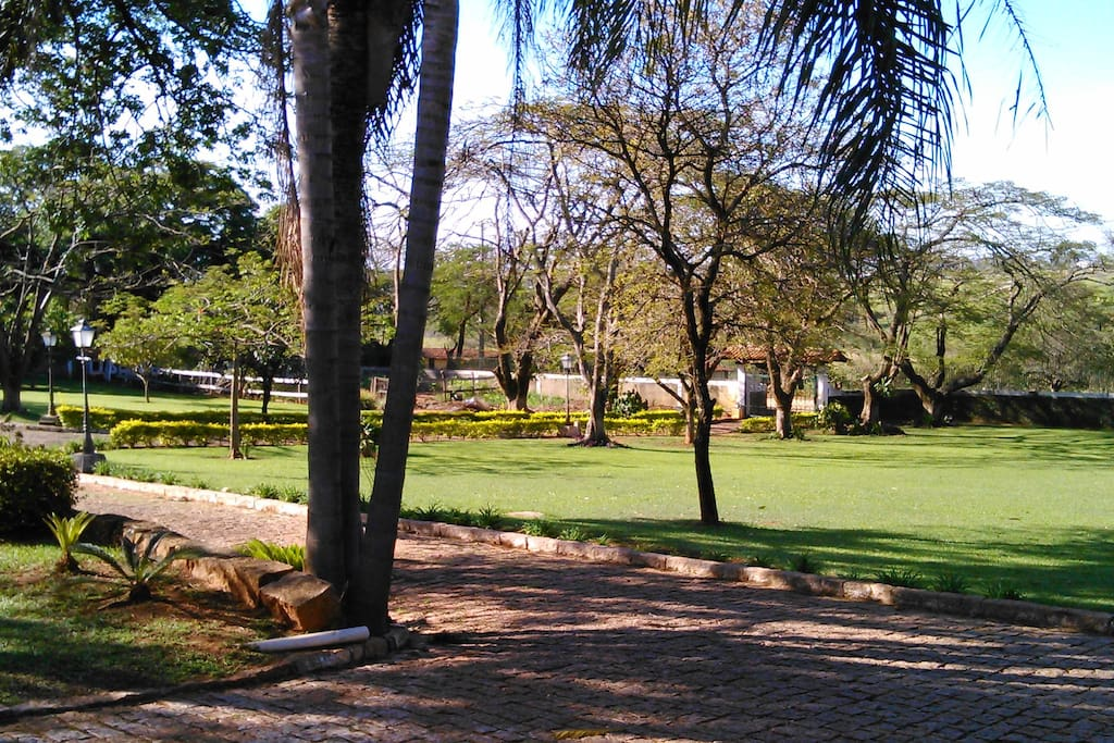 Ampla area verde para atividades
