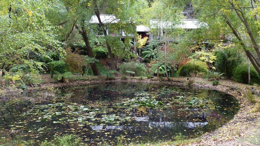 View of entire house from  pond on neighbour's property.