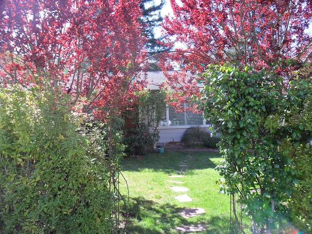 Garden Home in Sebastopol - Sebastopol - House