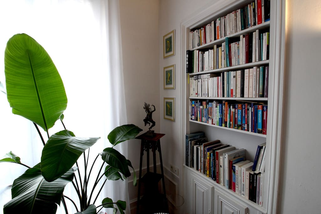 Book shelves and plants in the living- room