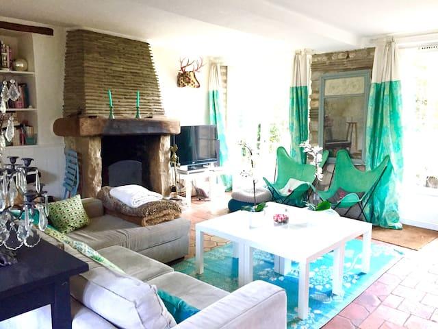Salon cosy et sa cheminée