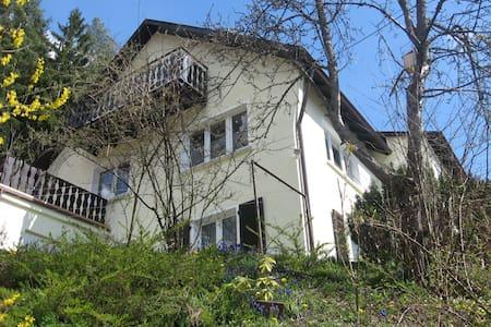 Ruhige Ferienwohnung am Waldrand - Alpirsbach