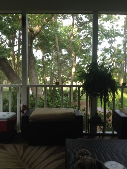 beautiful home near water bed and breakfasts for rent in mount pleasant south carolina. Black Bedroom Furniture Sets. Home Design Ideas