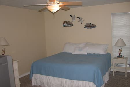 Clearwater Beach Large 1 BR Condo