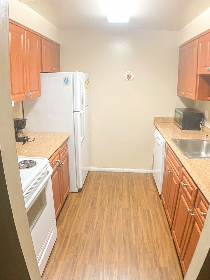 South Tampa  - Two BedroomOne Bathroom (Large)