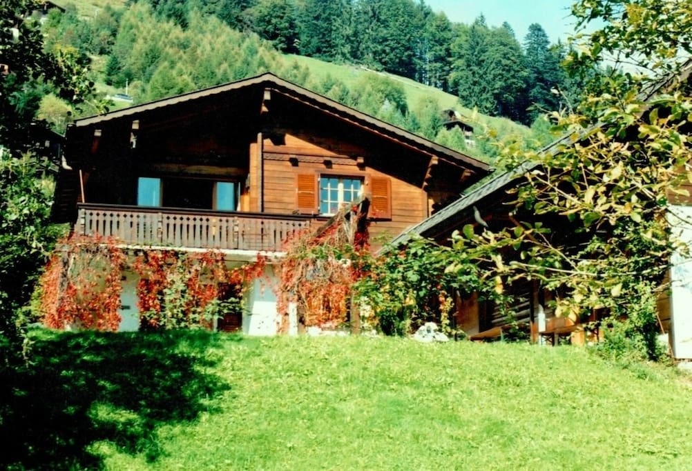 La Taupiniere is summer with sunny garden (flat around the chalet)