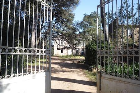 Rustic Manoir Montpellier Languedoc - Saint-Georges-d'Orques - 公寓