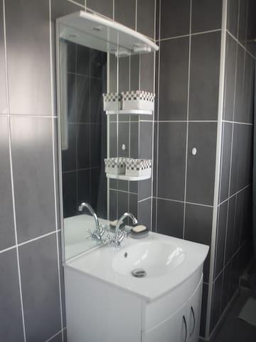 Salle de bain moderne avec une cabine douche . WC dans une pièce à part.