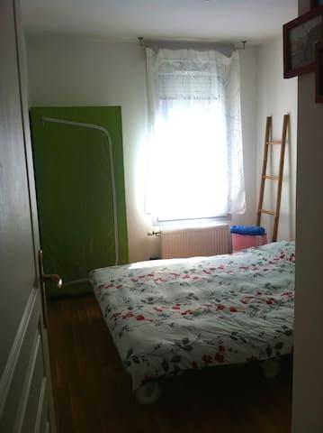 cosy room in urban villa + garden - Villeurbanne - Hus