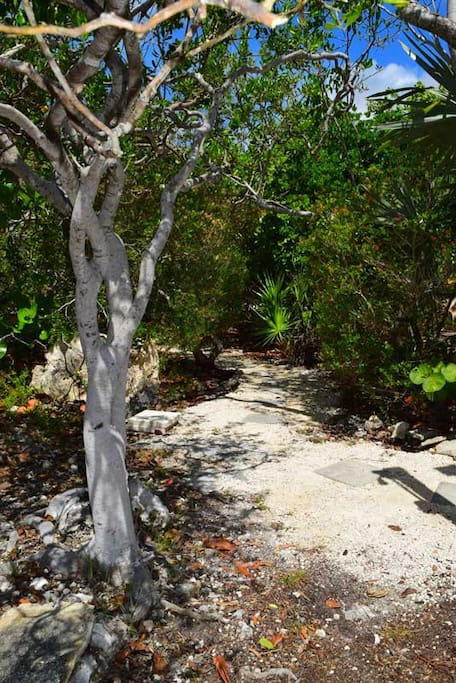 big pine key chat rooms See tripadvisor's big pine key, florida keys hotel deals and special prices on 30+ hotels all in one spot  guests 1 room, 2 adults, 0 children guests 1 2 age .