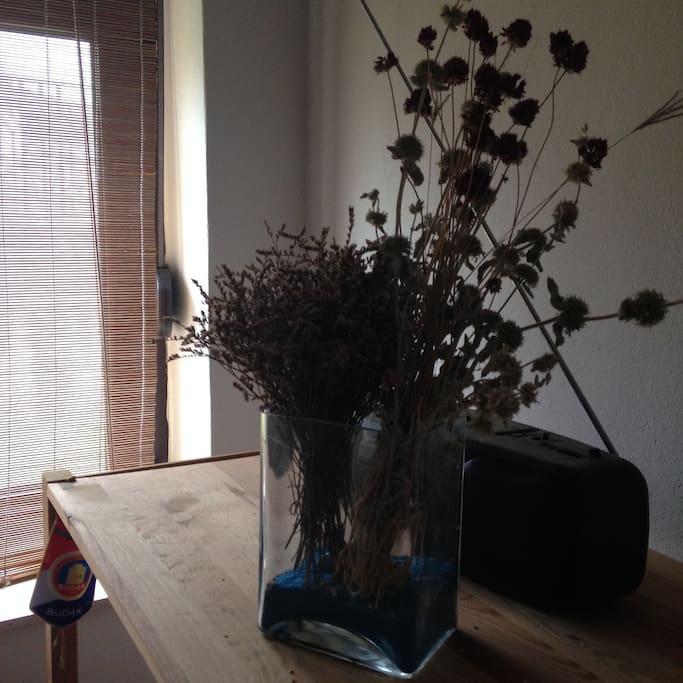 Dalamatian flowers ;)