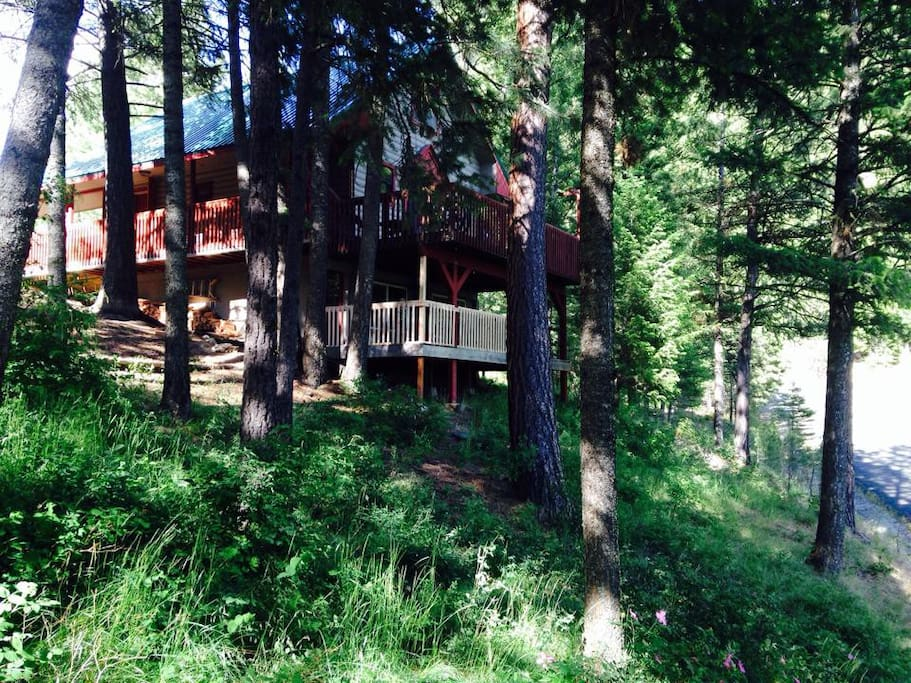 Our cabin sits adjacent to Jug Mountain trail system. Ski, bike or hike out the front door.