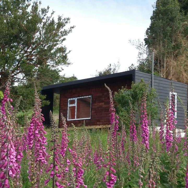 Casa Pumahue: Cabaña Tiny house