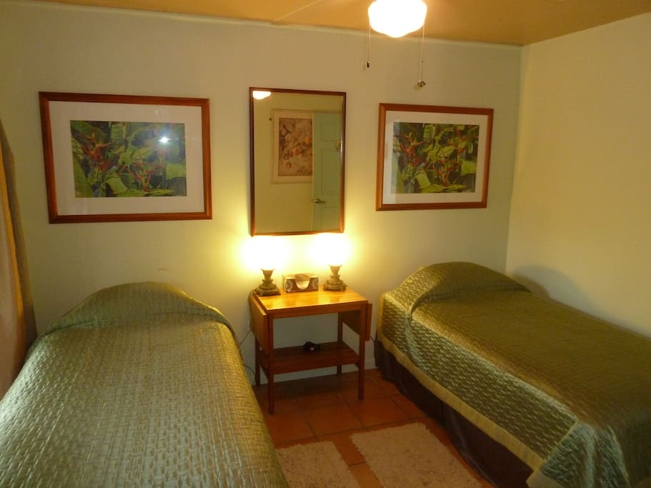 Interior view of the room with two twin beds.