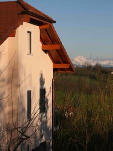 VILLA NEAR ANNECY, HAUTE SAVOIE     - CHESSENAZ - Villa
