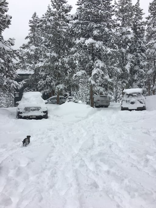 Winter at our house - 12/25/2017