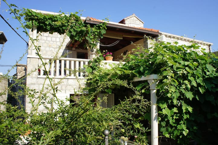 Villa Franka Apartment Lopud Island - Dubrovnik - Villa